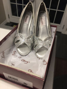 NEW. Ladies 8.5. Dye able silver shoes.   Gorgeous .