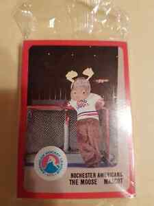 VINTAGE HOCKEY CARD TEAM SET ROCHESTER AMERICANS