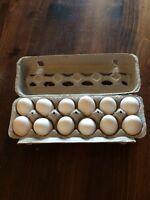 Fertilized eggs