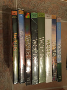 Weeds - all 8 seasons Brand new