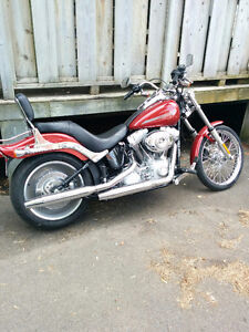 2007 HD Softail for sale