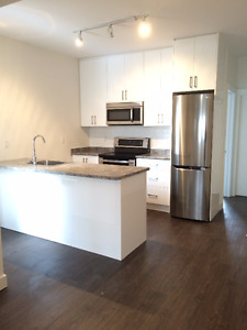 Large 3Bdr w/backyard, free parking, grt location, Close to TTC!