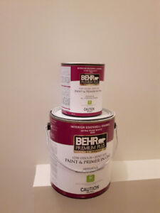 Interior Paint - Half Price and Ready to Go!