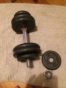 Dumbbell  free weight  single bar