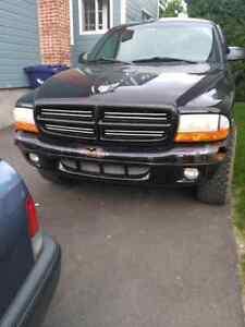 Dodge dakota 97
