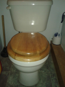 Used Bathroom Toilet - Nackawic