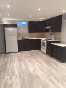 Newly Renovated Basement Apartment for Rent  $900