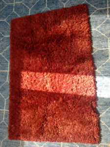 Small red shag rug