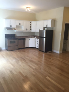 2 BEDROOM APT - BEAUTIFUL MODERN AND IN THE HEART OF DOWNTOWN