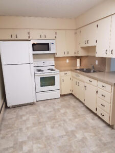 Large newly renovated 1 bedroom condo
