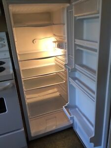 Danby counter depth refrigerator - apartment sized
