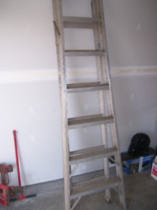Extension Ladder / Step Ladder all in one.