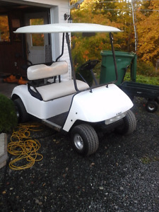 2007 Electric Golf Cart