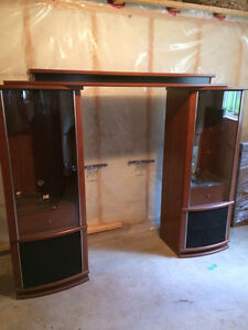 TV surround or two display cabinets.