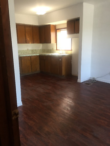 New reno 2 BDRM Main Floor Apt, downtown Alexandria