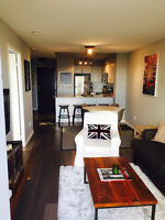 STUNNING PENTHOUSE CONDO WITH PARKING FOR RENT RICHMOND HILL