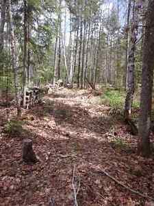 Terrain Chemin des Monts à Chertsey