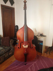 Contrebasse Double Bass