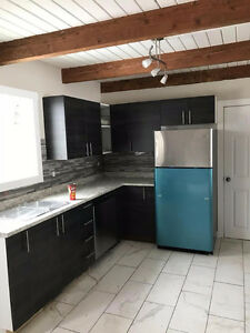 Brand Newly Renovated 3 Bedroom townhouse for Rent.