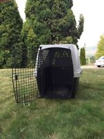 Noztonoz dog kennel