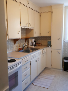 1 Bdrm Apt in Pain Court(5min to Chatham!)All utilities included