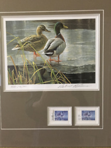Bateman Wildlife Duck Signed Print and Stamps
