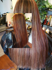 Hair Extentions Highlights & Colours Belleville Belleville Area image 8
