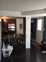 Clean and Bright room in a townhouse near Dundas West Station Wa