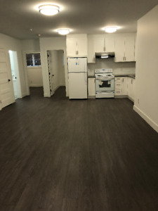 BRAND NEW 2-BEDROOM BASEMENT FOR RENT - BURNABY