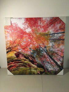 Outdoor Picture on Canvas