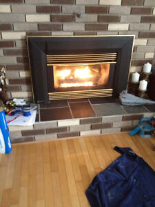 Regency Propane Fireplace Insert $400OBO