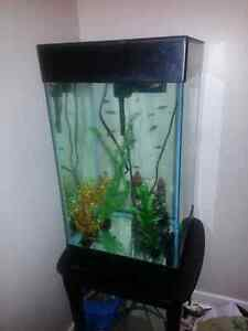 Trade 15 gallon upright tank for a decent video card