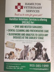 Veterinary services / animal hospital for dogs & cats, Hamilton