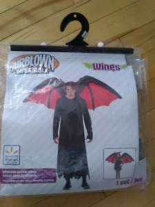 Inflatable wings
