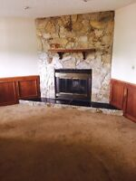 New renovated basement for rent