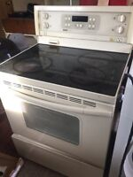 Glass top convection oven
