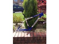 Specialized stumpjumper mountain bike frame