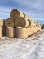 Oat greenfeed and hay bales for sale