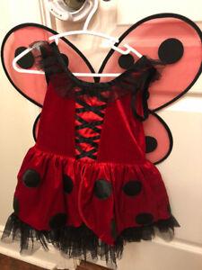 Ladybug Costume size 4
