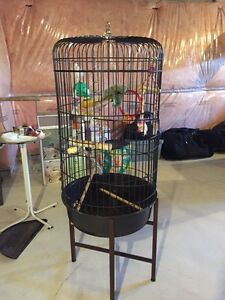Bird Cages and Stands London Ontario image 3