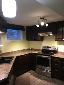New Kitchen, Private Entrance, Bright Basement Suite