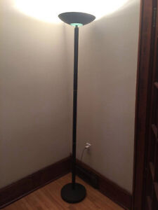 Black Steel Dimmer Floor Lamp
