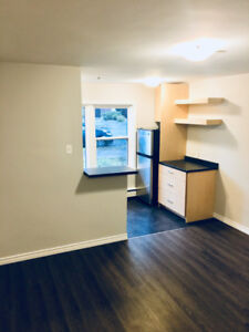 Nov. 15th - Newly Reno'd Bach Unit in the heart of Downtown
