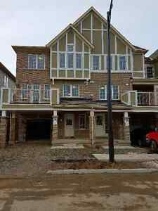 Milton: A Brand- New, Never-Lived Town Home Avaiable Immediately