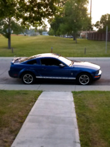 2006 FORD MUSTANG 5000