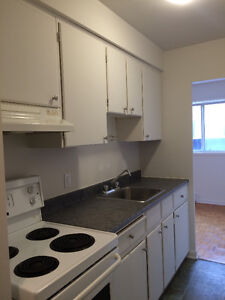 Spacious 2 Bedroom Apartment in Great Location! Kingston Kingston Area image 1