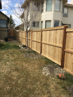 Professional carpenter! Decks-Fences-Pergolas-Custom Carpentry
