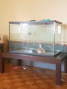 Tank and table for sale