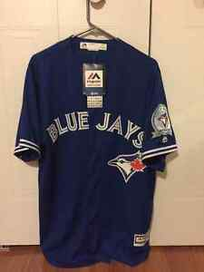 40th Anniversary Pillar jersey