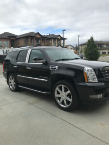 2009 Cadillac Escalade For Sale